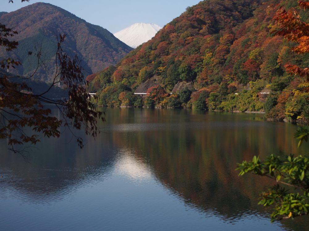 丹沢湖富士山