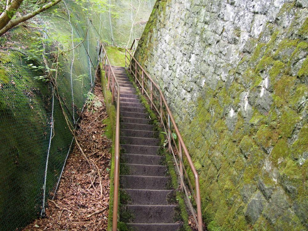 堰堤の階段