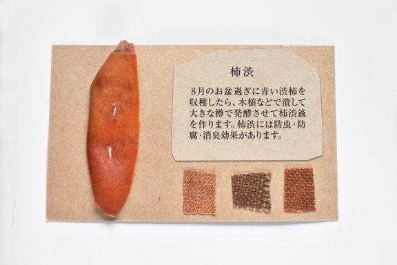 植物カード:柿渋