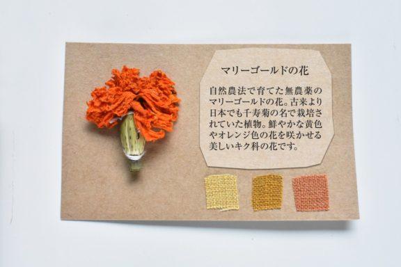 植物カード:マリーゴールドの花